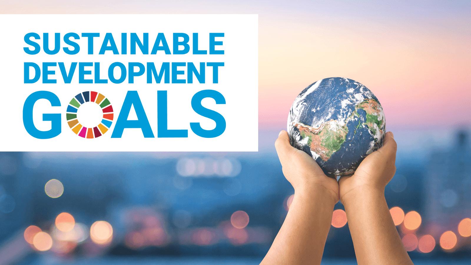 SDG Webinar